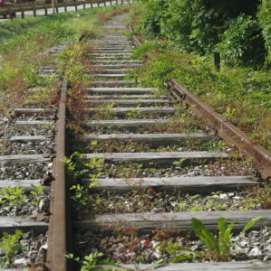 Disused section, track, weed