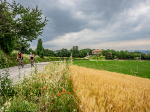 Two road cyclists on tour in the Apennin on a lonely mountain road near Verucchio, province of Rimini in the Emilia-Romagna region