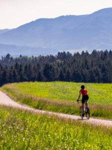 Rennradfahrer auf schmaler Bergstraße im Mittleren Schwarzwald, Gemeinde Biederbach, Baden-Württemberg