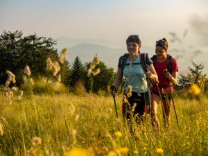 Wandern auf dem Zweitälersteig, schmaler Wanderweg am Gipfel des Kandel, Blick Richtung Westen