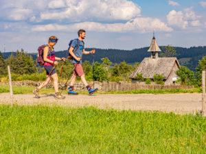 Wandern auf dem Zweitälersteig, Rohrhardsberg