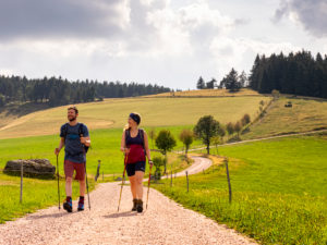 Hiking on the Zweälersteig, Rohrhardsberg
