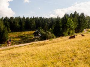 Wandern auf dem Zweitälersteig, Rohrhardsberg, Gasthaus zur Schwedenschanze