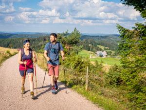 Wandern auf dem Zweitälersteig, Rohrhardsberg, im Hintergrund Schänzlehof, Blick Richtung Nordost