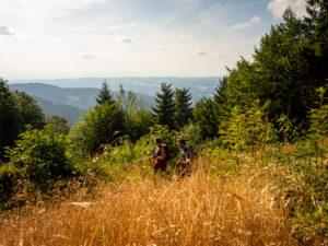Hiking on the Zweälersteig, Tafelbühl with a view of the Simonswäldertal