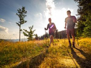 Wandern auf dem Zweitälersteig, Magerweiden am Rohrhardsberg