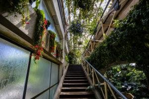 Greenhouse, Conservatory, Conservatory Greenhouse, Christchurch Botanic Gardens, New Zealand, South Island