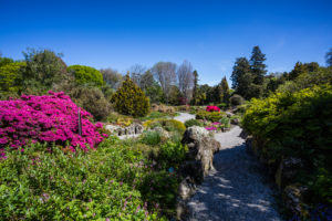 Christchurch Botanic Gardens, New Zealand South Island