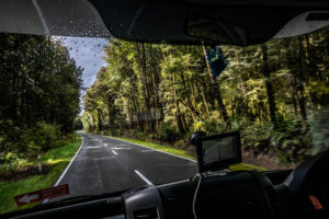Straße durch Wald, Scheibenblick, Highway 7, Südinsel Neuseeland