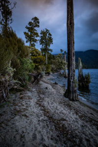 Abendstimmung am Ufer des Lake Brunner, Südinsel Neuseeland