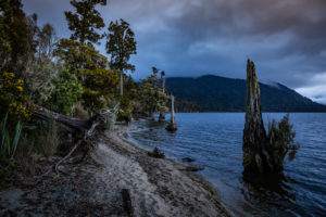 Evening mood on the shores of Lake Brunner, South Island New Zealand