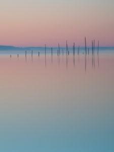 Fischreusen im Morgenrot, Müritz, Mecklenburgische Seenplatte, Deutschland, Europa