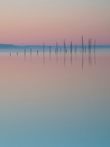bow nets in the red sky, Müritz, Mecklenburg Lake District, Germany, Europe