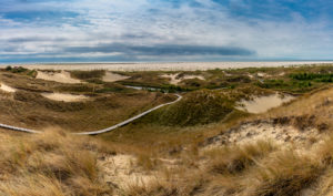 Europe, Germany, Schleswig-Holstein, North Frisian island, North Friesland, North Sea, Amrum, boardwalk through heath and dunes