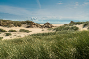 Europe, Germany, Schleswig-Holstein, North Frisian island, Nordfriesland, North Sea, Amrum, dunes on Amrum