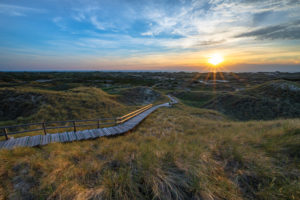 Europe, Wadden Sea, North Sea, North Sea island, Germany, North Frisia, Schleswig-Holstein, Amrum - Small island big freedom