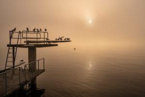 Europa, Schweiz, Kanton Zürich, Zürichsee, Goldküste, Stäfa, Nebelstimmung im Strandbad Stäfa
