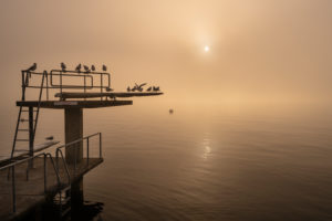 Europe, Switzerland, Canton of Zurich, Lake Zurich, Gold Coast, Stäfa, foggy mood in the Stäfa lido