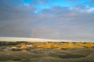 Europe, Germany, North Frisia, Schleswig-Holstein, Wadden Sea, North Sea, North Sea island Amrum