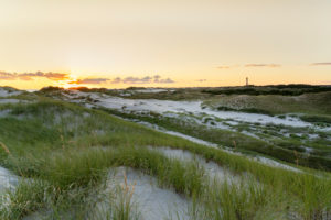 Europe, Wadden Sea, North Sea, North Sea Island, Germany, North Friesland, Schleswig-Holstein, Amrum