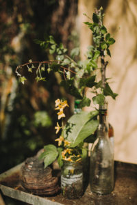 Glasses, bottle, flowers and ivy