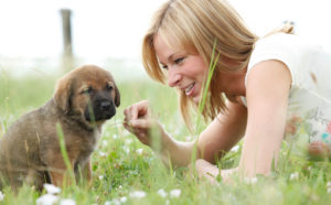 Woman with dog puppy in the meadow