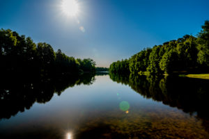 Small lake in summer with sun