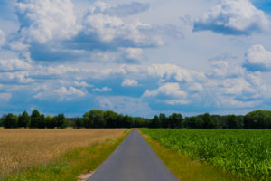 Agricultural area on a sunny day in summer with big clouds, small country farm road between the fields