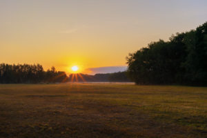 Sunrise in the summer in Germany