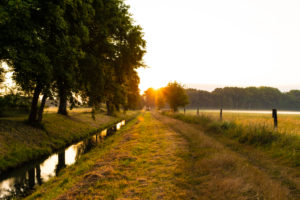 Sunrise in summer in Germany on a small river