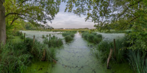 Germany, Lower Saxony, Riddagshausen, landscape, nature reserve