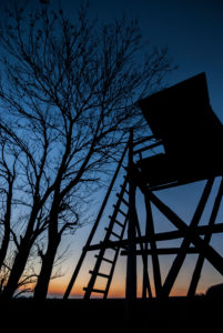 Germany, Lower Saxony, Wolfenbüttel, Kneitlingen, silhouette raised high at blue hour