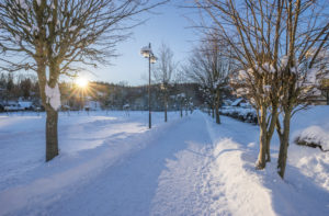 Germany, Sachsen-Anhalt, Elend, hiking trail in winter