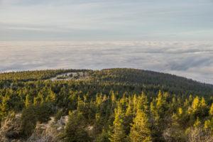 Deutschland, Sachsen-Anhalt, Nationalpark Harz, Brocken bei Inversionswetterlage am Abend