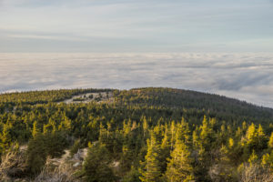 Germany, Saxony-Anhalt, Harz National Park, Brocken at inversion weather in the evening