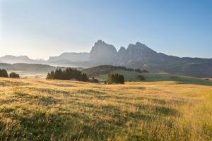 Seiser Alm, Kastelruth, Südtirol, Provinz Bozen, Italien, Europa. Frühling auf der Seiser Alm mit Blick zum Langkofelmassiv