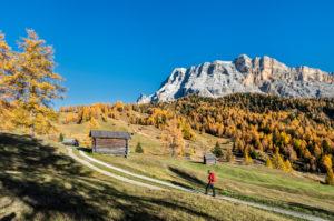 Hochabtei / Alta Badia, Provinz Bozen, Südtirol, Italien, Europa. Im Aufstieg zu den Armentarawiesen. Im Hintergrund die Gipfel der Neunerspitze, Zehnerspitze und Heiligkreuzkofel