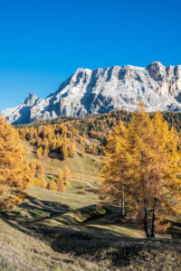 Hochabtei / Alta Badia, Provinz Bozen, Südtirol, Italien, Europa. Herbst auf den Armentarawiesen, darüber die Felswände des Neuner, Zehner und Heiligkreuzkofel