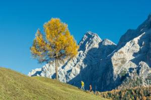 Hochabtei / Alta Badia, Provinz Bozen, Südtirol, Italien, Europa. Kinder wandern über die Armentarawiesen, im Hintergrund die Neunerspitze