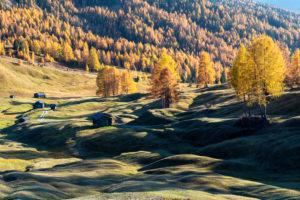 Hochabtei / Alta Badia, Provinz Bozen, Südtirol, Italien, Europa. Herbst auf den Armentarawiesen