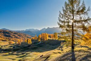 Hochabtei / Alta Badia, Provinz Bozen, Südtirol, Italien, Europa. Herbst auf den Armentarawiesen, im Hintergrund die Marmolada