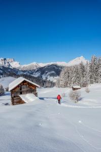 Hochabtei / Alta Badia, Provinz Bozen, Südtirol, Italien, Europa. Im Aufstieg mit Schneeschuhen zu den Armentarawiesen. Im Hintergrund die Puezgruppe und der Peilterkofel