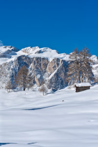Hochabtei / Alta Badia, Bolzano province, South Tyrol, Italy, Europe. Winter on the Armentara meadows. In the background the Gardenaccia plateau