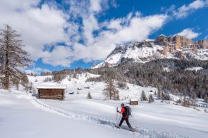Hochabtei / Alta Badia, Provinz Bozen, Südtirol, Italien, Europa. Im Aufstieg mit Schneeschuhen zu den Armentarawiesen. Im Hintergrund die Gipfel der Neunerspitze, Zehnerspitze und Heiligkreuzkofel