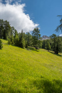Aldein, Provinz Bozen, Südtirol, Italien. Geoparc Bletterbach. dAS aLDEINER wEI?HORN