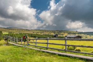 Villanders, Provinz Bozen, Südtirol, Italien. Ein Wanderer unterwegs auf der Villanderer Alm