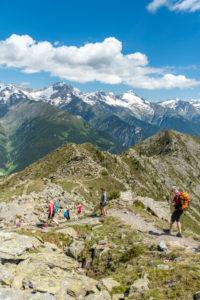 Sand in Taufers, Provinz Bozen, Südtirol, Italien. Wanderer auf dem Panoramaweg im Wandergebiet Speikboden. Im Hintergrund die Zillertaler Alpen mit den Gipfeln Schwarzenstein und Grosser Löffler