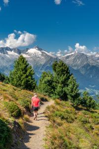Sand in Taufers, Provinz Bozen, Südtirol, Italien. Wanderer auf dem Panoramaweg im Wandergebiet Speikboden. Im Hintergrund die Zillertaler Alpen mit dem Grossen Löffler