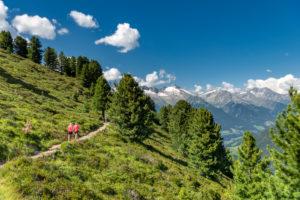 Sand in Taufers, Provinz Bozen, Südtirol, Italien. Wanderer auf dem Panoramaweg im Wandergebiet Speikboden. Im Hintergrund die Zillertaler Alpen mit den Gipfeln Grossen Löffler, Keilbachspitze und Wollbachspitze