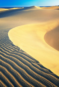 Maspalomas sandy dunes, Gran Canaria, Canary Islands, Spain
